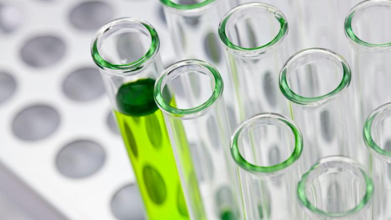 Biotecnología: presente y futuro de la agroindustria